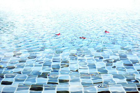 rippled: Rippled water texture in swimming pool Stock Photo
