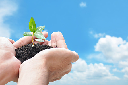 Hand holding sprout with soil, environment conservation concept - border design with copy space photo