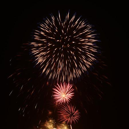 spectacular: Spectacular firework Stock Photo