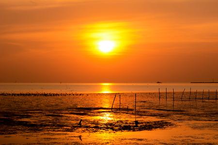 seacoast: Beautiful sunset at the wetland seacoast Stock Photo