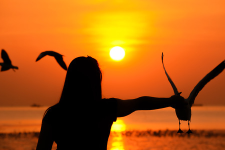 seacoast: Silhouette of a girl feeding birds at the seacoast in twilight sunset background Stock Photo
