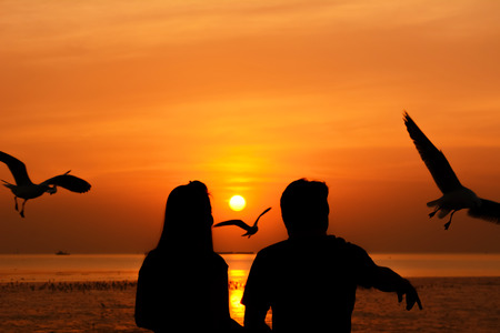 male and female: Silhouette of male & female (couple) feeding birds at seacoast with twilight sunset background