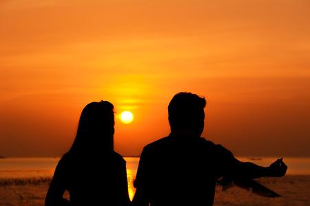 siluetas de enamorados: Silueta de aves hembra (pareja) de alimentación macho y en la costa con fondo sunset