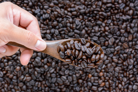 spoonful: Hand holding spoonful of dark roasted coffee beans Stock Photo
