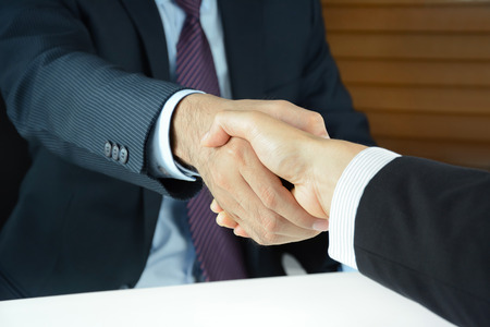 handclasp: Handshake of businessmen - greeting , dealing, merger and acquisition concepts