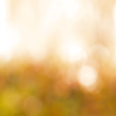 defocus: Shiny light brown bokeh abstract background