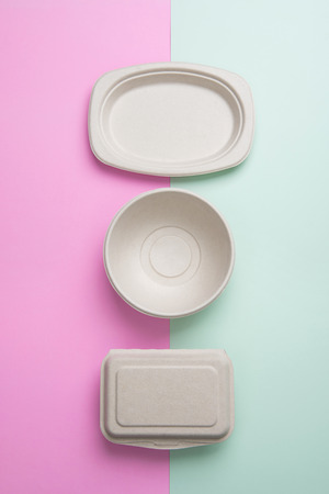 biodegradable: Biodegradable takeaway food containers