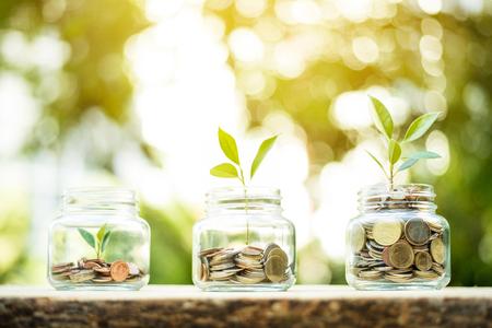 Planta joven que crece en los frascos de vidrio que tienen dinero (monedas) - concepto de ahorro e inversión