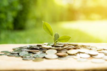 お金 (硬貨) - 貯蓄と投資概念のヒープから育つ若い植物