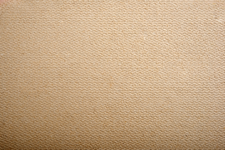 natural backgrounds: Light brown paper texture for background