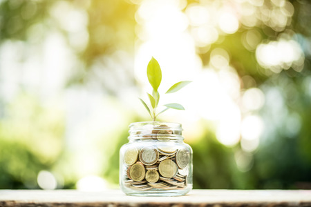 Young plant growing in the glass jar that have money (coins) - savings and investment concept Imagens