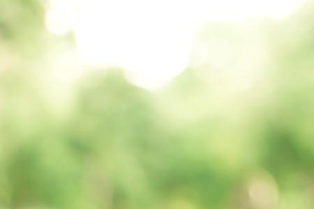 푸른 나무 흐림, 추상적 인 성격 배경