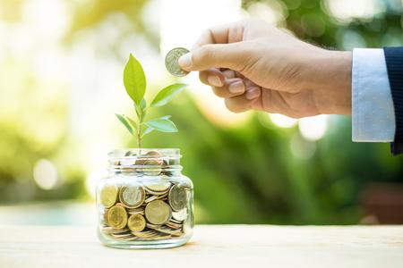 Planta que crece del dinero en el tarro de cristal - metáfora financiera, concepto de ahorro e inversión