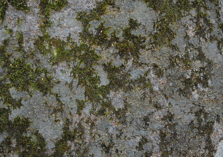 Beautiful texture of a stone. High resolution.
