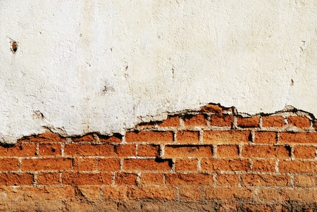 Grunge brick wall Stock Photo - 11314176