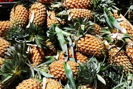 vitamines: Pineapples at a market