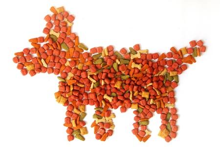 comida perro: comida para perros aislados Foto de archivo
