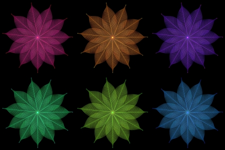 Skeleton leaf abstract background Stock Photo - 14809373