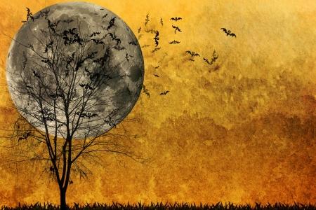 drakula: Halloween background  Stock Photo