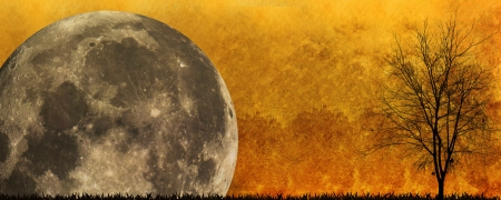 drakula: Halloween background