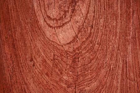 fond de vieux bois