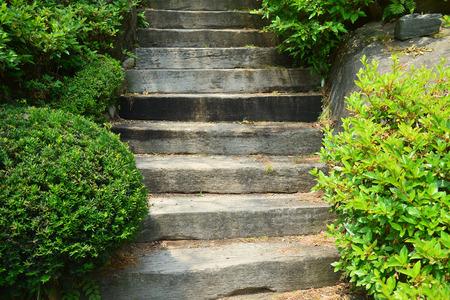 chemin de l'escalier de bois sur jardin verdoyant Banque d'images