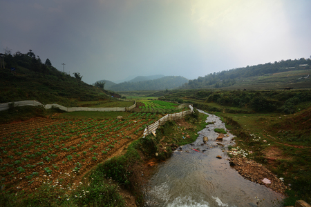 Beautiful landscape with green field on mountains and cloudy sky in Sa Pa, Vietnam
