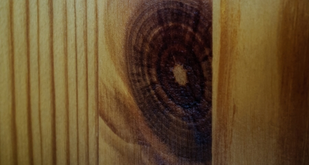 WOOD GRAIN BACKGROUND TEXTURE photo