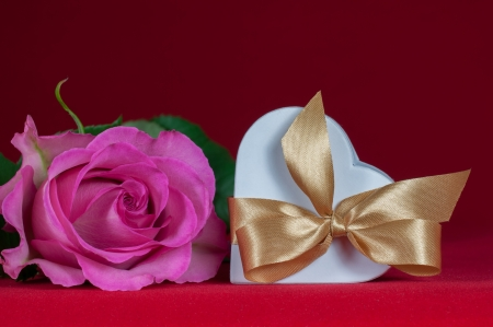 heart shaped gift box with  pink rose on red background photo