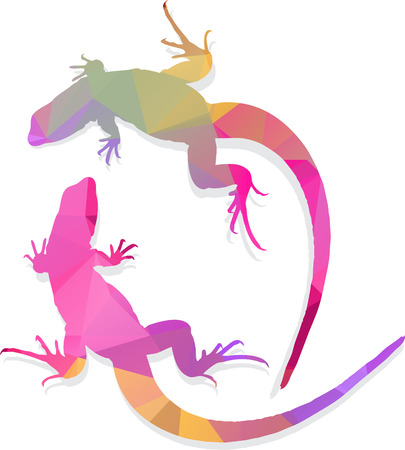africa chameleon: Lizard abstract art multicolored polygonal illustration
