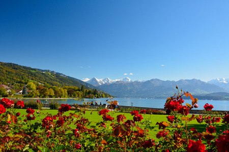 Lake Thun with Jungfrau mountain in autumn on clear blue sky , Switzerland, Shot using CPL  filter photo
