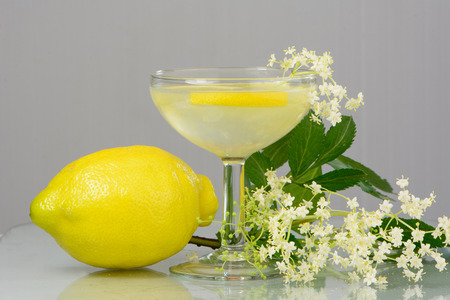 summer drink Elderflower Lemonade photo