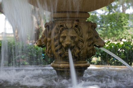 Lion head fountain photo