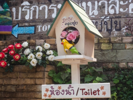 Toilet doi pui  Changmai, North of thailand photo