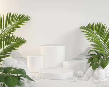 Empty White Podium Collection Set With Palm Leaves And Tropical Plants Archivio Fotografico