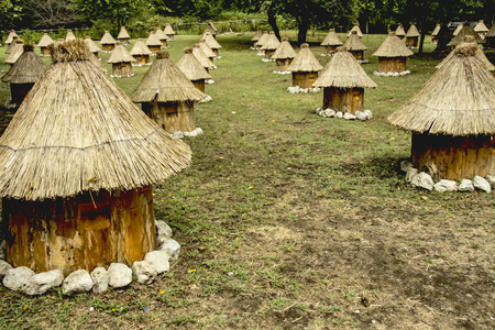 Group wooden bee hives with thatched roof