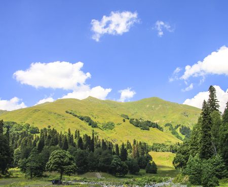 Picturesque natural sunny landscape of green alpine meadows