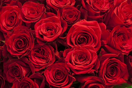 Romantic background of a bouquet of red Reklamní fotografie - 117498336