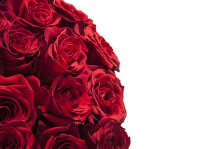 Romantic background of a bouquet of red on a white background.