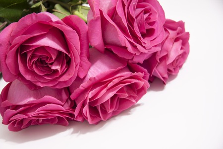 Romantic background of a bouquet of pink rose
