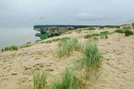 Dead Dunes in Neringa, Lithuania  UNESCO World Heritage Site photo