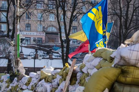 abatis: KIEV, UKRAINE  31 JANUARY 2014  Maidan protests on 31 January 2014 in Kiev, Ukraine