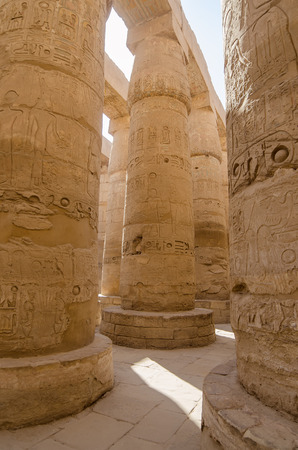 precinct: Columns in Precinct of Amun-Re  (Karnak Temple Complex, Luxor, Egypt)