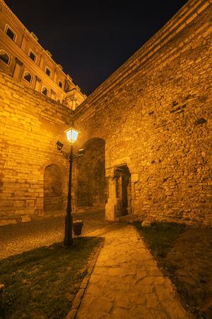 buda: Walls of Buda Castle Budapest, Hungary at night