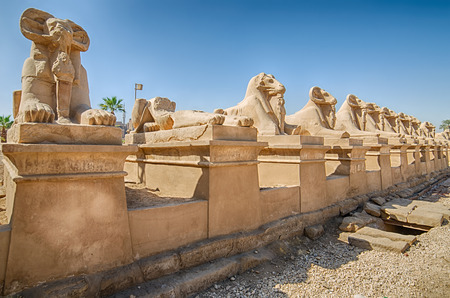 precinct: Avenue of ram-headed sphinxes in the Precinct of Amun-Re  Karnak Temple Complex, Luxor, Egypt