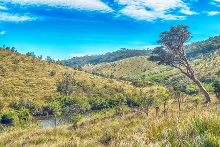 Sri Lanka: highland Horton Plains National Park