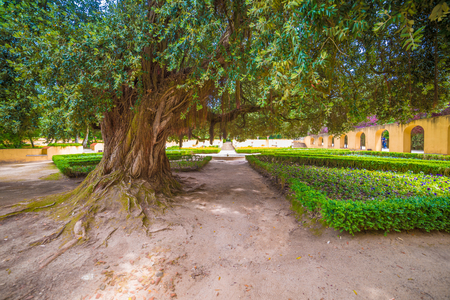 : the Garden of Royal Convent and Palace of Mafra, baroque and neoclassical palace – monastery