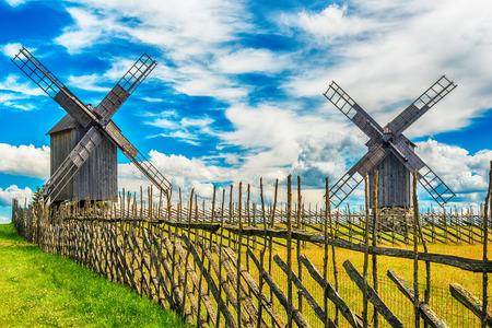 Île de Saarema, Estonie: champs d'été et moulins à vent d'Angla dans la paroisse de Leisi