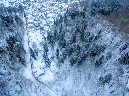 Aerial top view of snowy forest and detached houses in winter