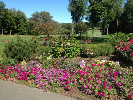 Flowers and bright blue sky over looking a golf fairway.